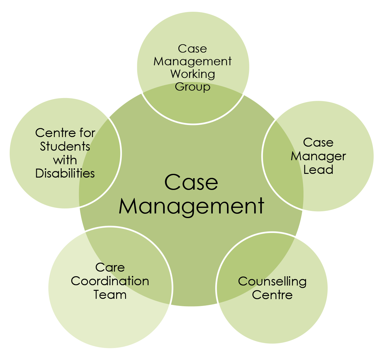 case management within a circle of care centre for innovation in