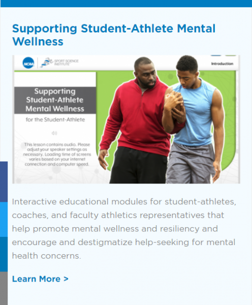 Supporting Student Athlete Mental Wellness Centre For Innovation